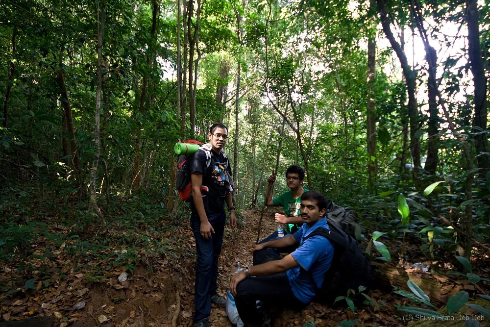 Trekking in the dense jungle