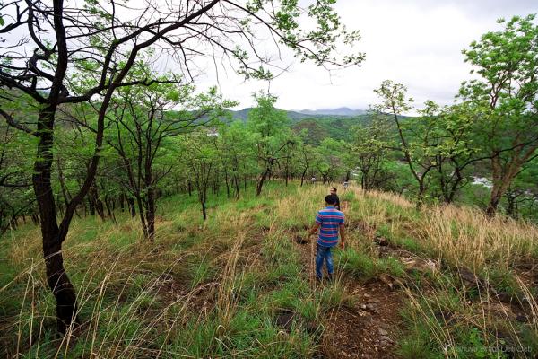 Trekking Bheemeshwari