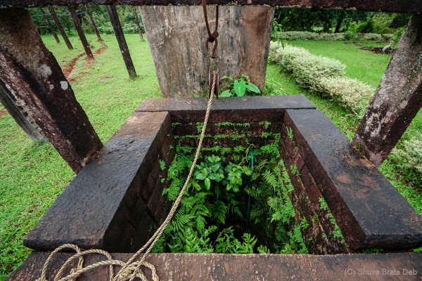 Agumbe #7. Old well, actually still functioning