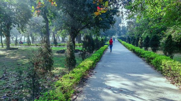 You can walk alone when its beautiful outside.