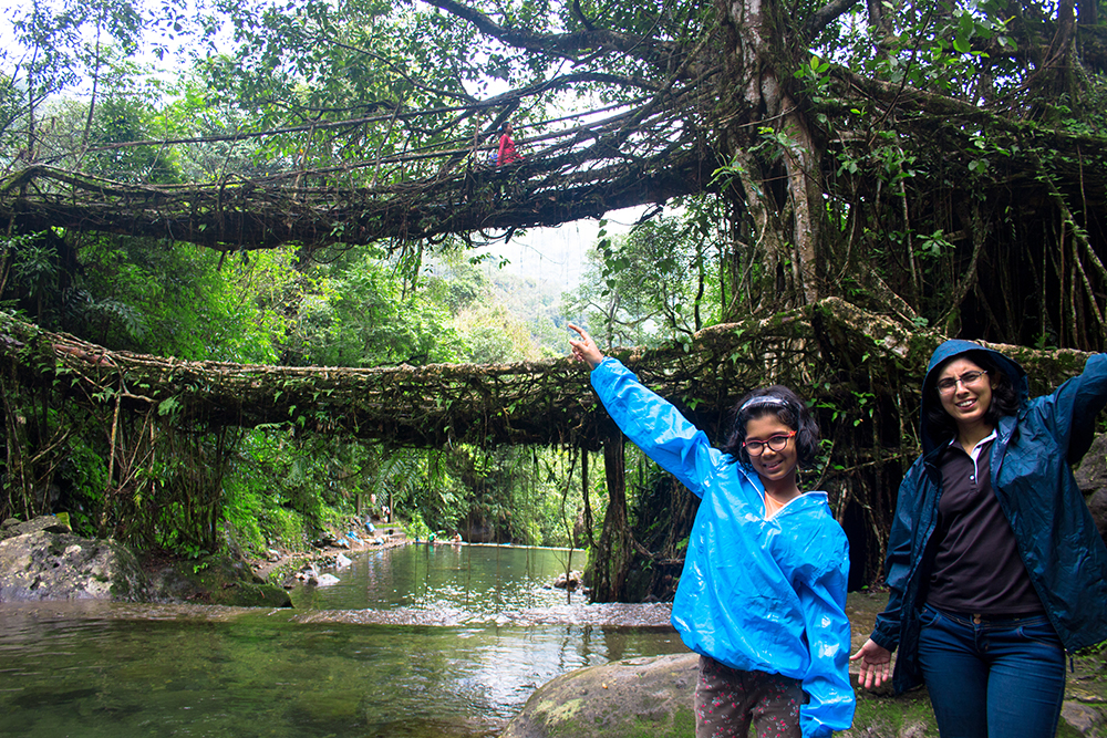 At Double Decker Living Root Bridge