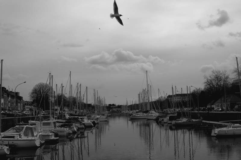 The sailing harbour of Vannes.
