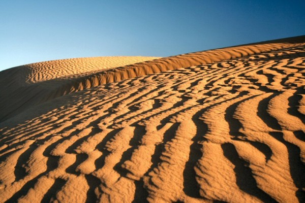 Last week we went to desert Sahara.