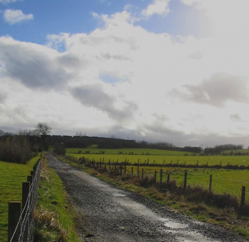 Green Meadows of Scotland!