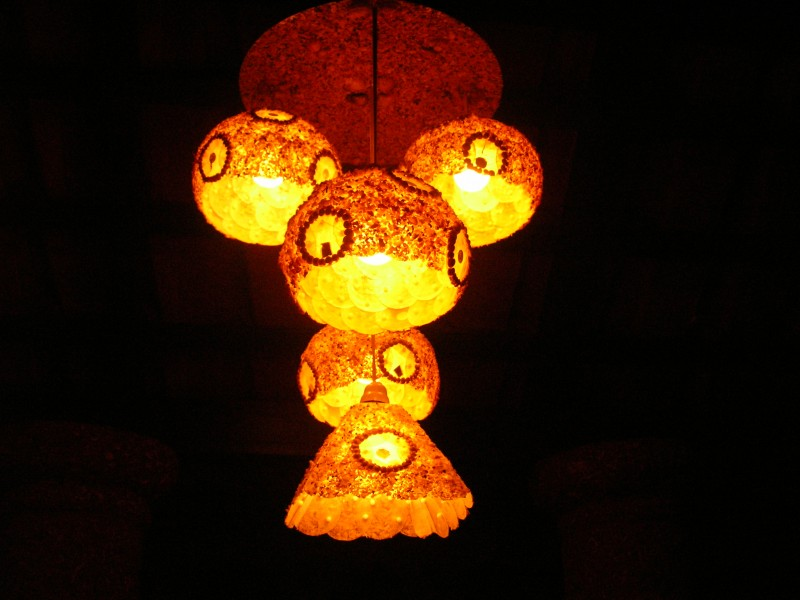 Lamp made with sea shells