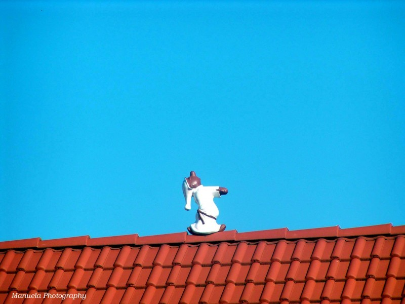 sleepwalker roof  house sky tiles walk sleep