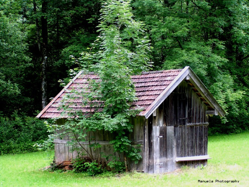 field hay germany bavaria partnachklamm cabin