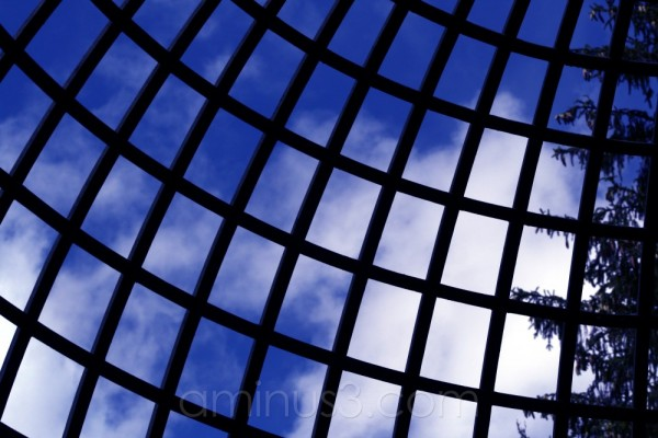 sky blue dome tree gardens germany palace