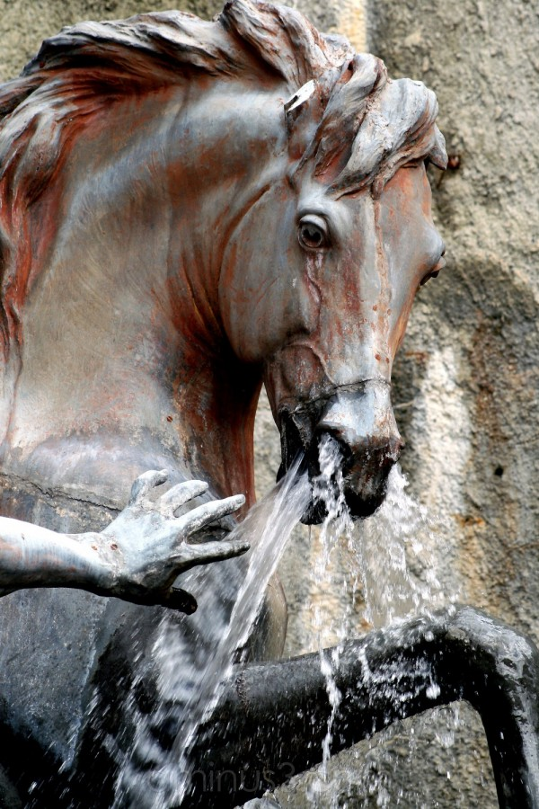 horse stone gardens statue palace fountain germany