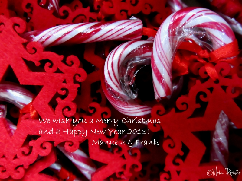 christmas wishes holidays candy cane red new year