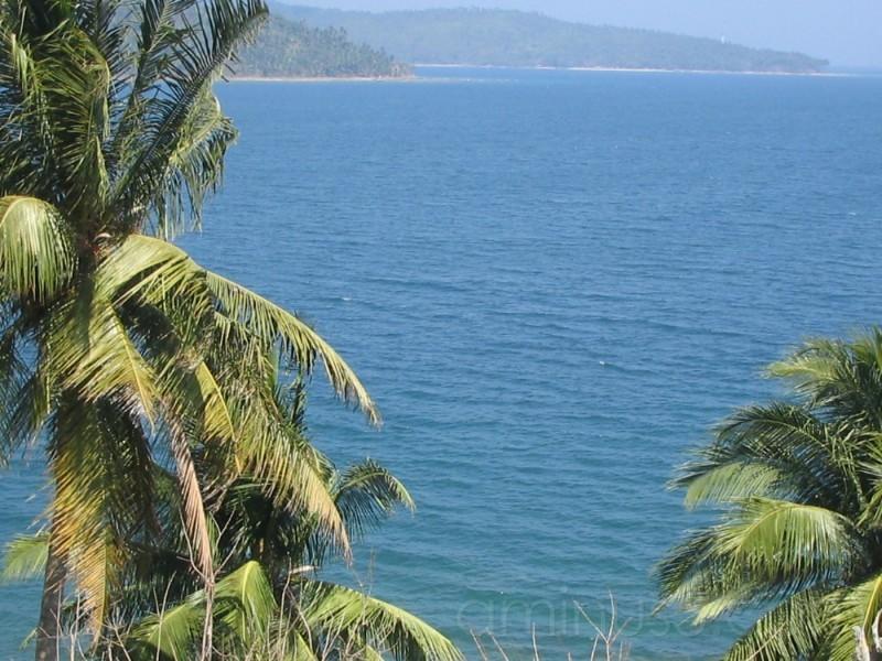 The 'Blue' Sea