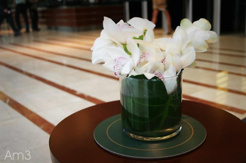 Floral Beauties...5