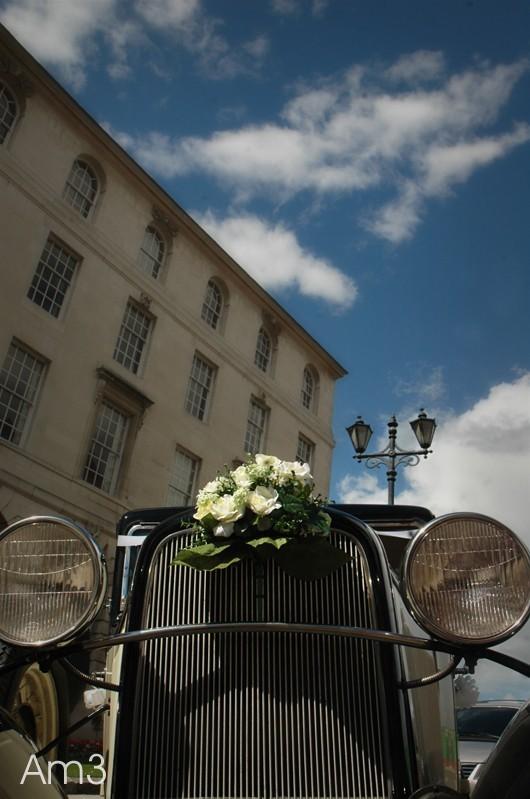 Wedding Bells...1
