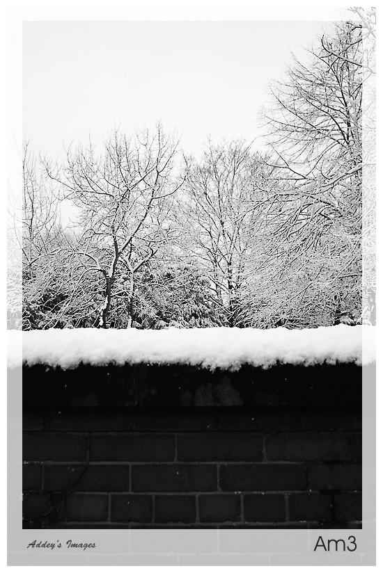 Let It Snow...4