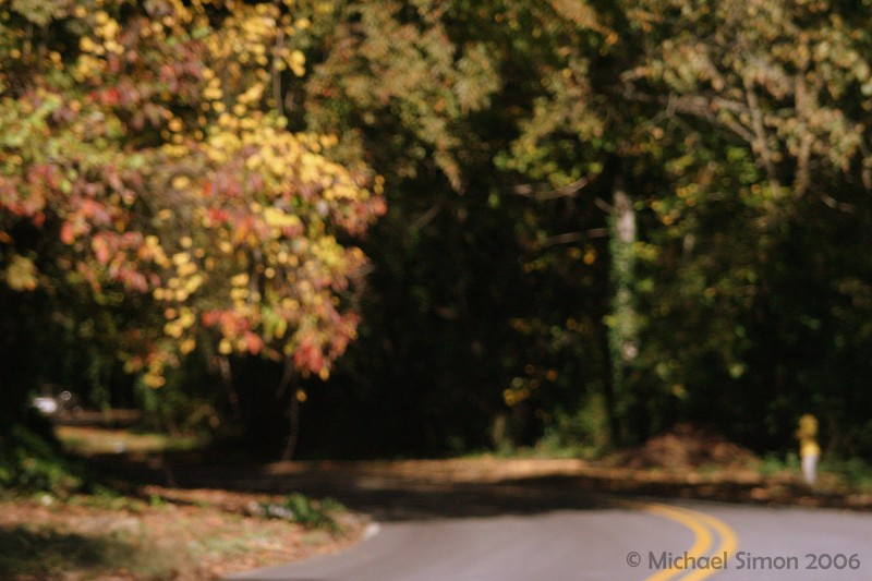 Impressionistic Fall Landscape