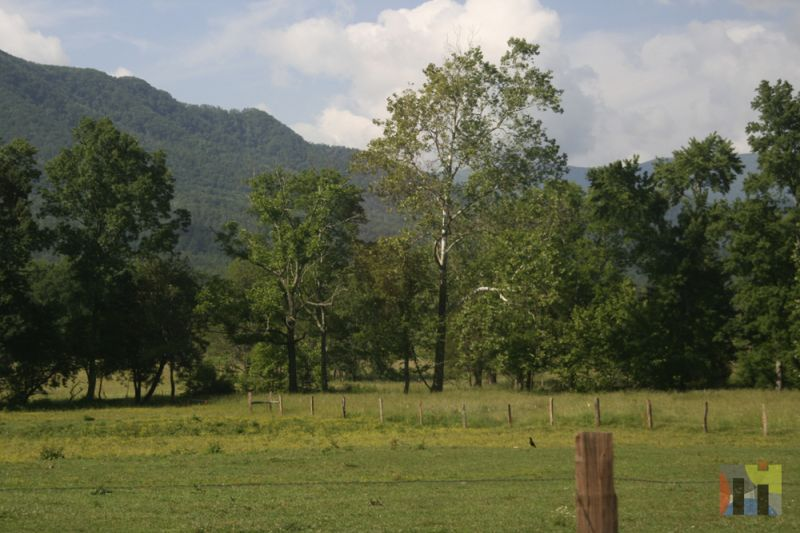 Cades Cove in The Great Smokey Mountains