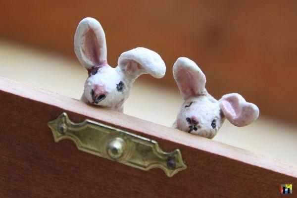 Bunny Portrait 3