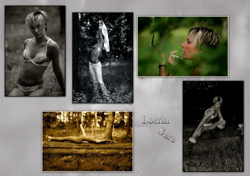 Lorrin Sara