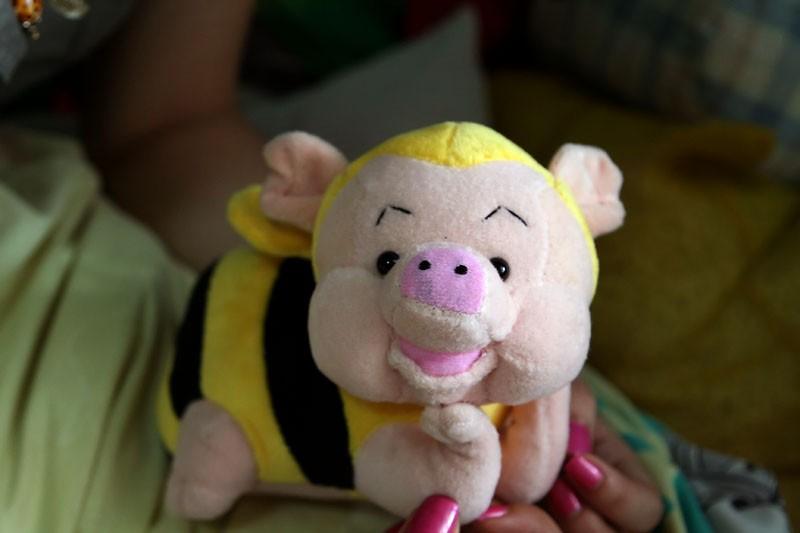 Pig bee