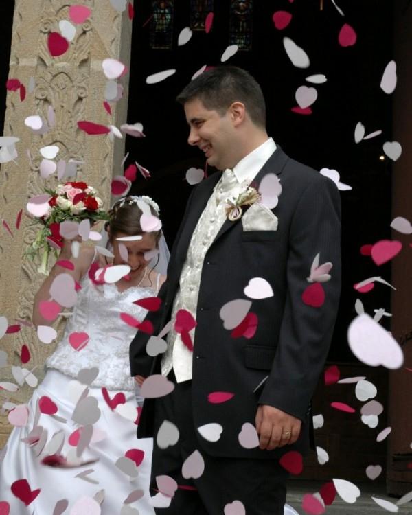 Mariage Jerome et Carine au Montet, Allier, France