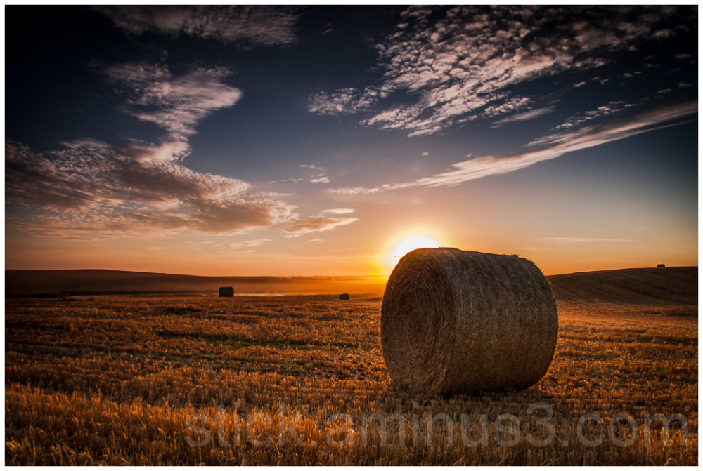 Bales of hay at sunset