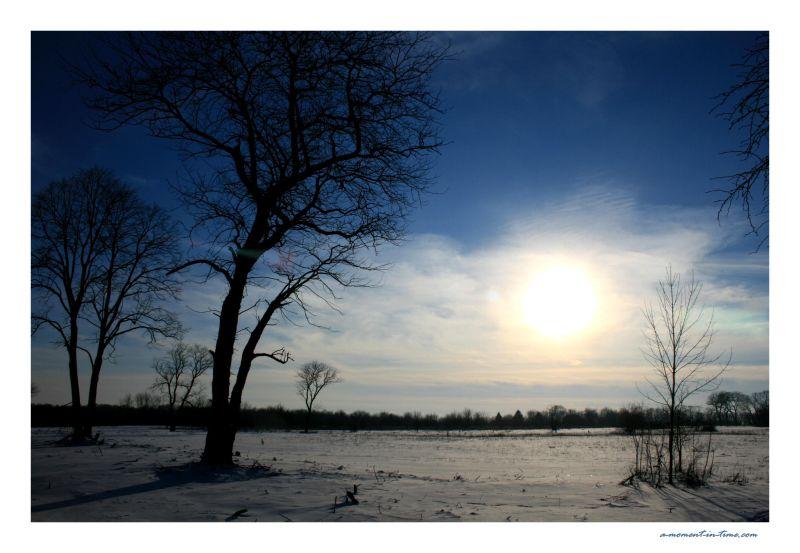 Peaceful Prairie