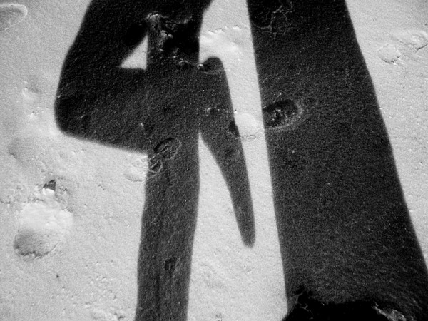 A shadowy self-portrait