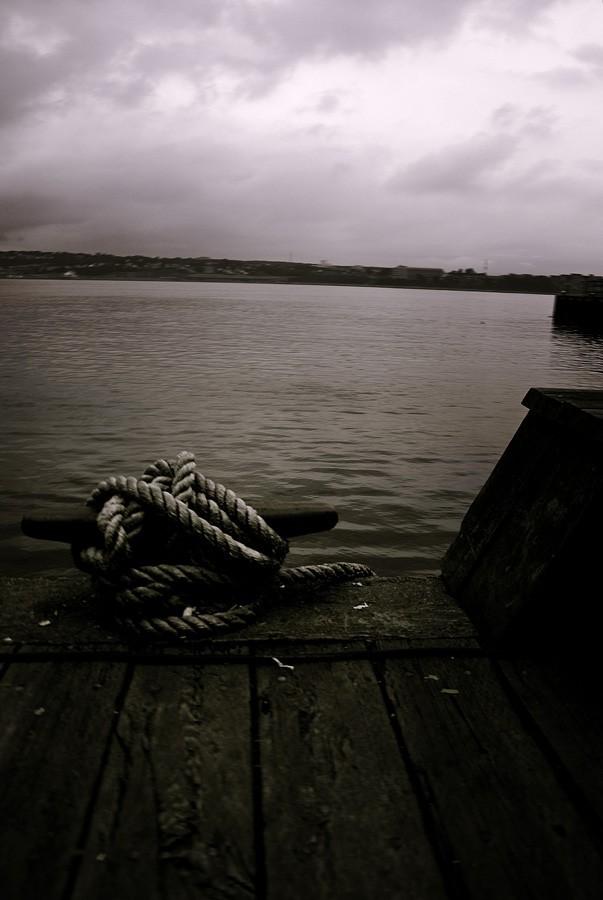 Shoreline Cleat