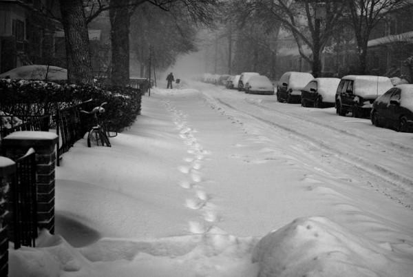 The Snow Shoveller