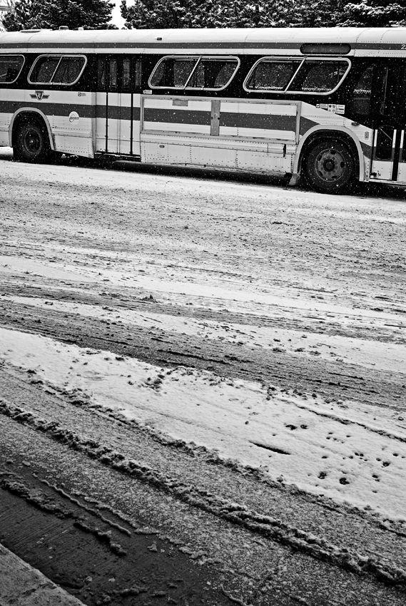 Bus Tracks