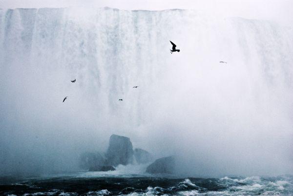 Niagara Falls: Bird's-eye view