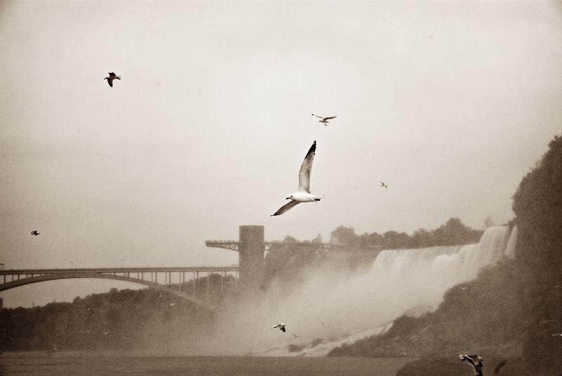 Niagara Falls: Old Postcard