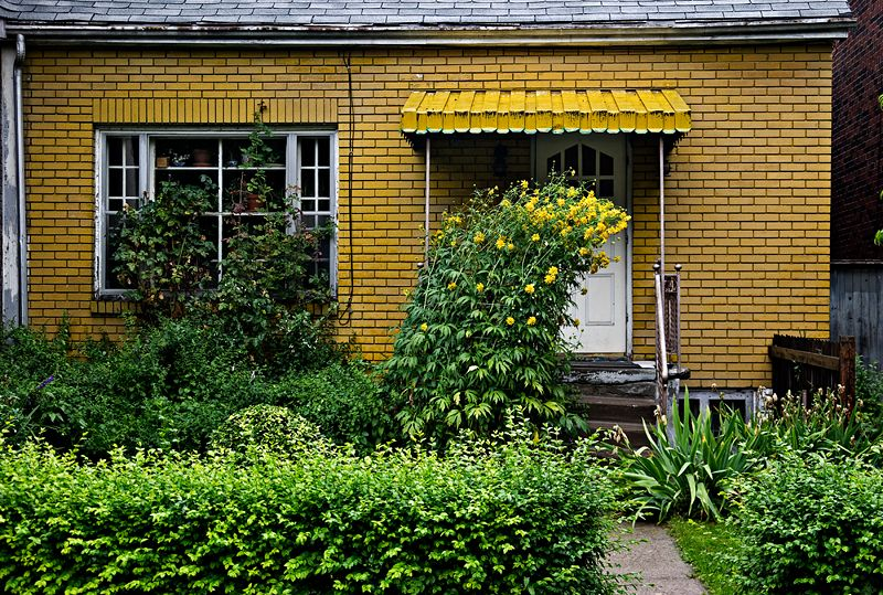 Yellow Dwelling
