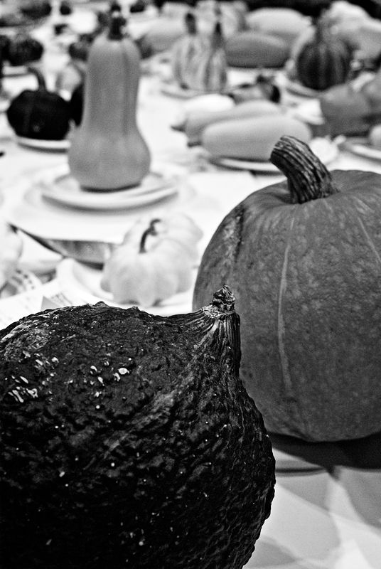 Squash on Display
