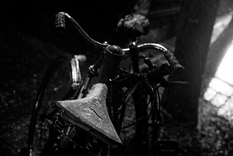 Bikerotica
