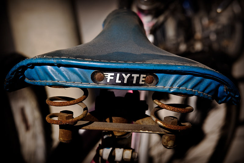 Dusty Flyte