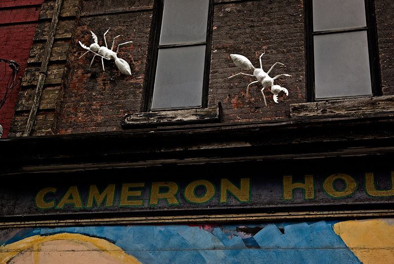 Cameron House (detail)