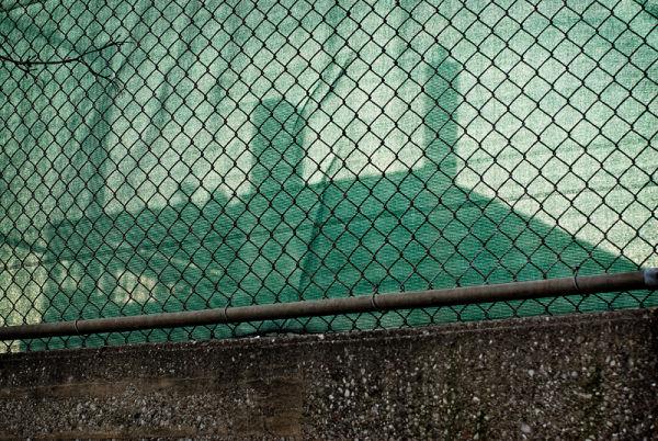 The Green Veil