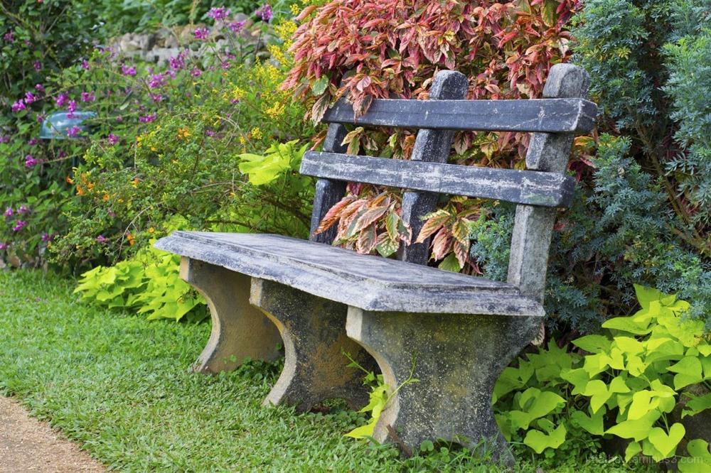 Empty garden bench