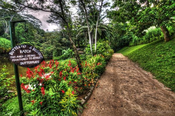 Butterfly garden path, Hunas Falls Hotel, Kandy