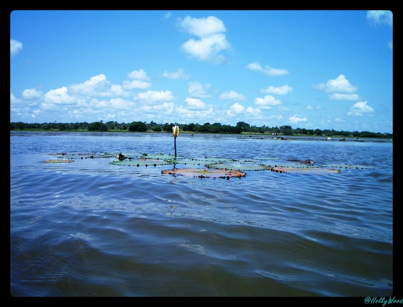 Lac Tengrela - Burkina Faso