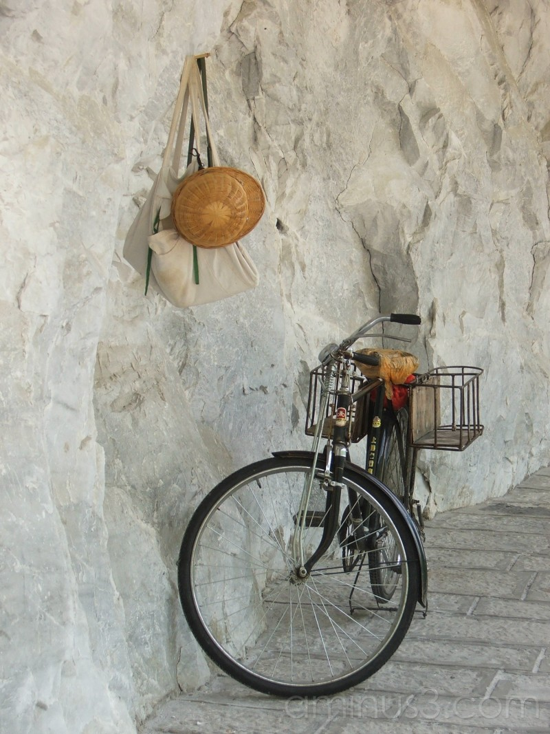 bicycle, still life, study, hat