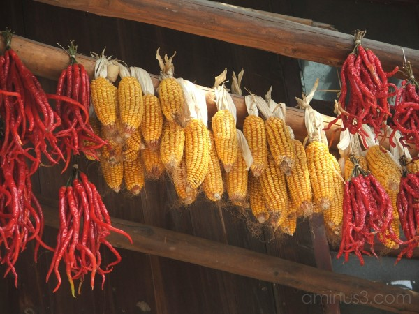 corn and chillies
