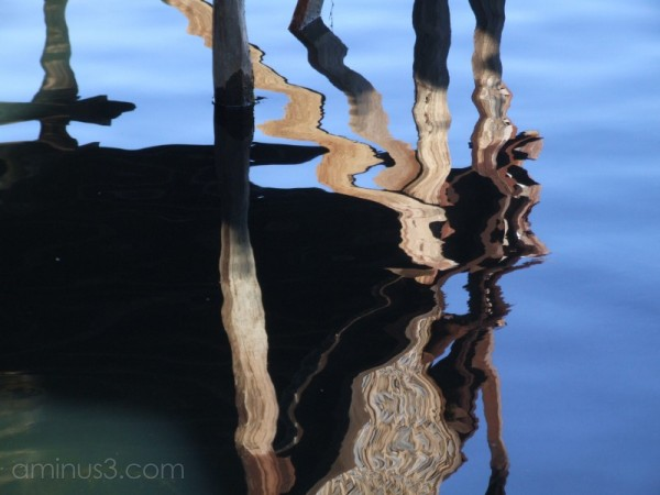 Reflections 5
