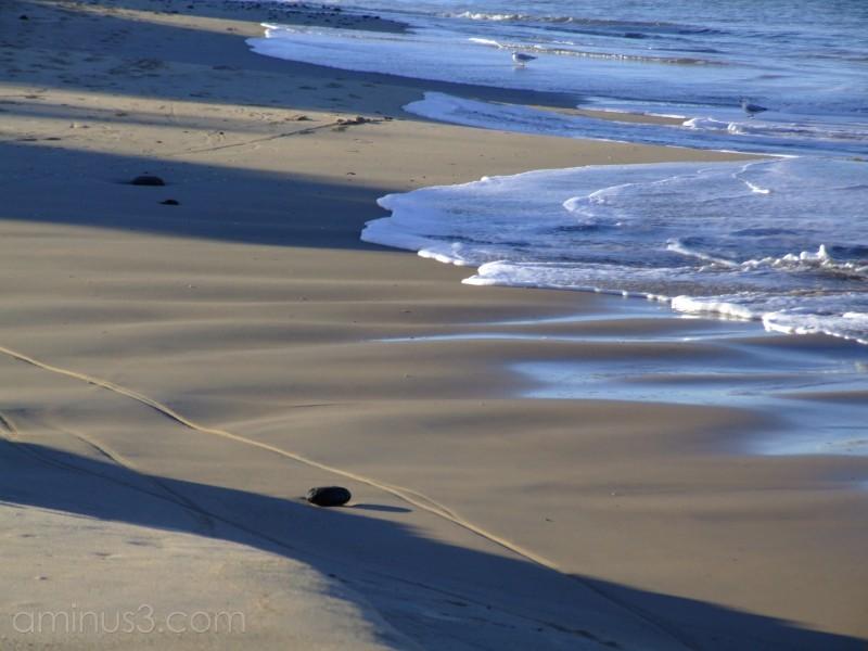 Winter Tide 2