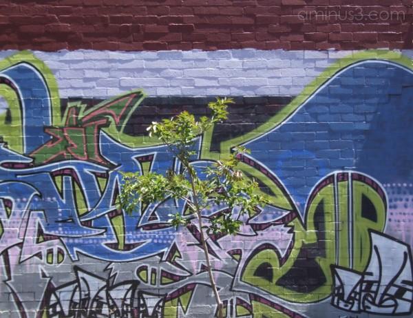 Graffiti Days (3 of 6)
