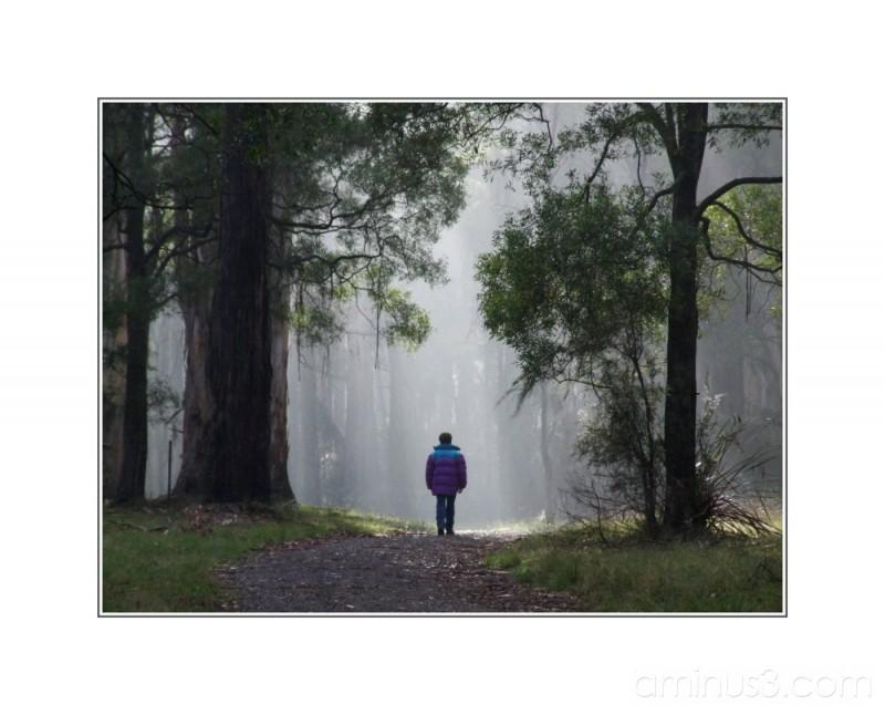 Promenade matinale 1