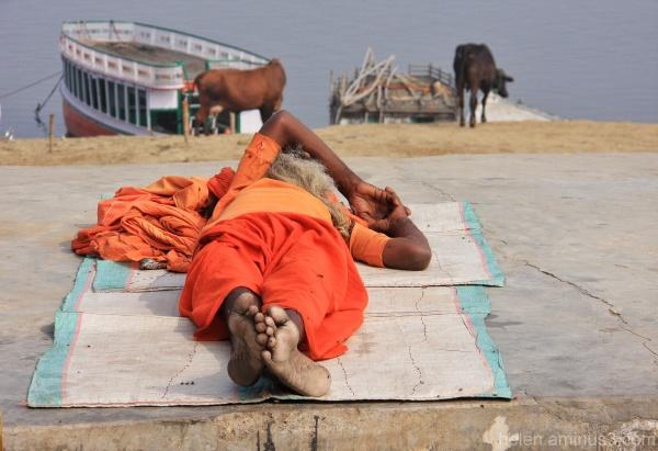 Saffron dreaming