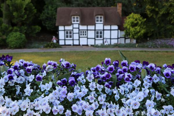 ... in an English country garden