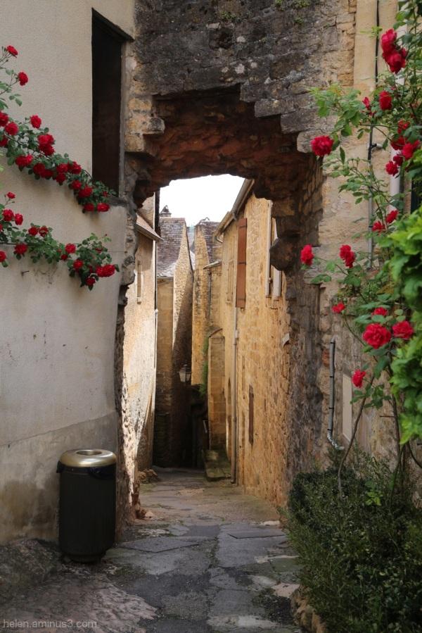 Ruelle des roses